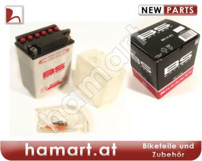 hamart Battery
